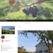 home of Rita Farm & winery