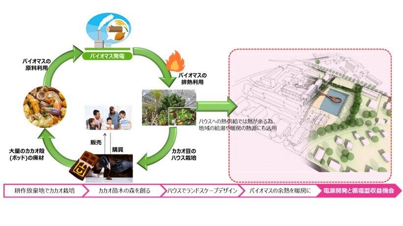 カカオの森づくりを通した循環型社会づくりのイメージ