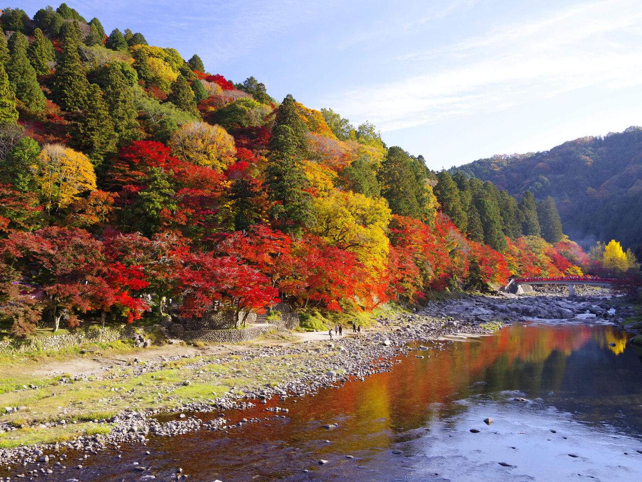 秋の香嵐渓