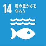 海と海洋資源の保全