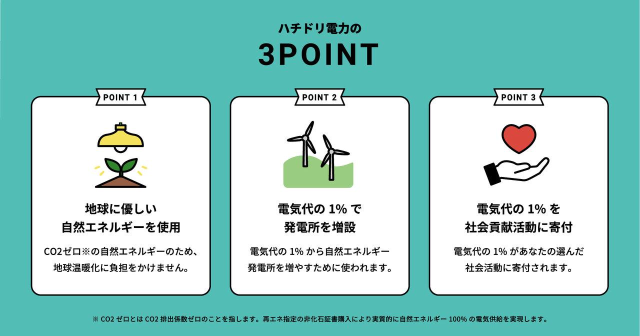 ハチドリ電力の3POINT