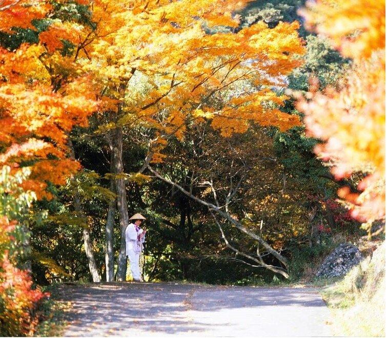 秋のお遍路