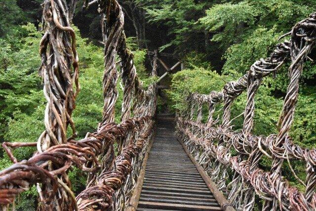 祖谷渓にかかるかずら橋