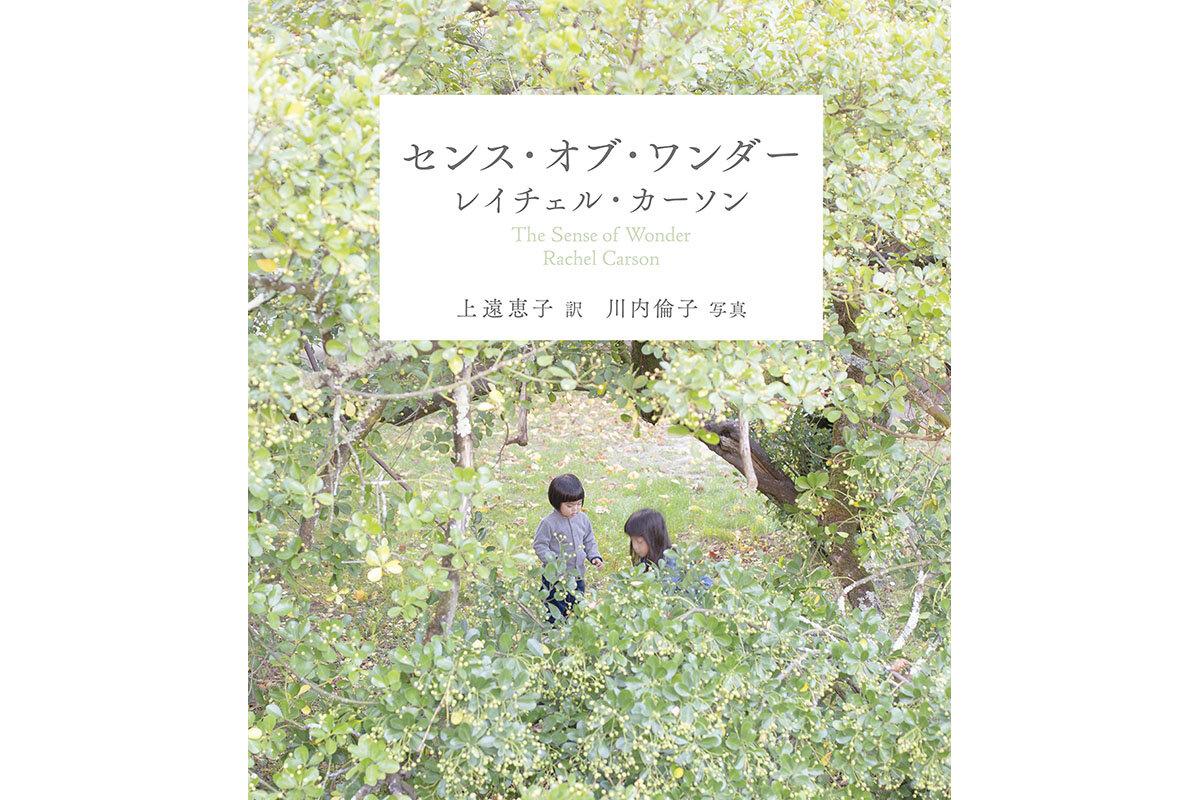 今だからこそ、親子で読みたい。 新訳『センス・オブ・ワンダー』発売