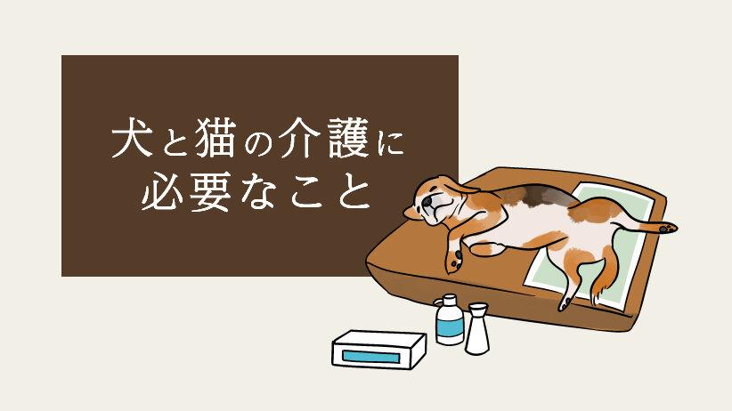 犬と猫の介護に必要なこと