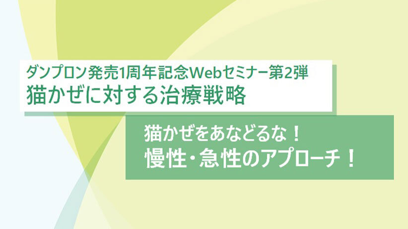 ※終了しました※ダンプロン発売1周年記念Webセミナー第2弾「猫かぜに対する治療戦略」