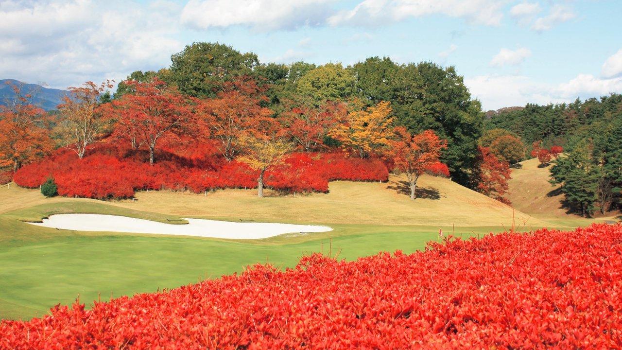 秋のPGMのゴルフ場は成績よりも景色を楽しんだ人こそが勝ち!? 富岡カントリークラブ