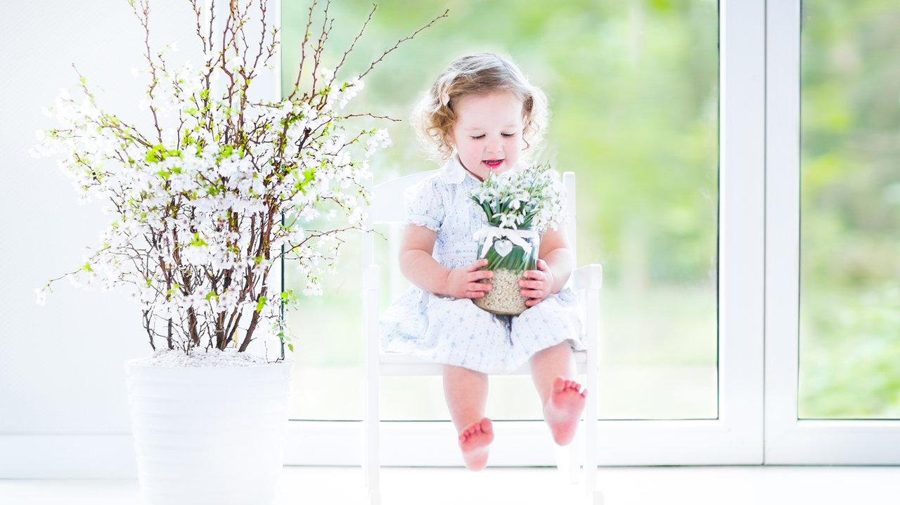 お家で家族とお花見!おすすめお家花見グッズ3選
