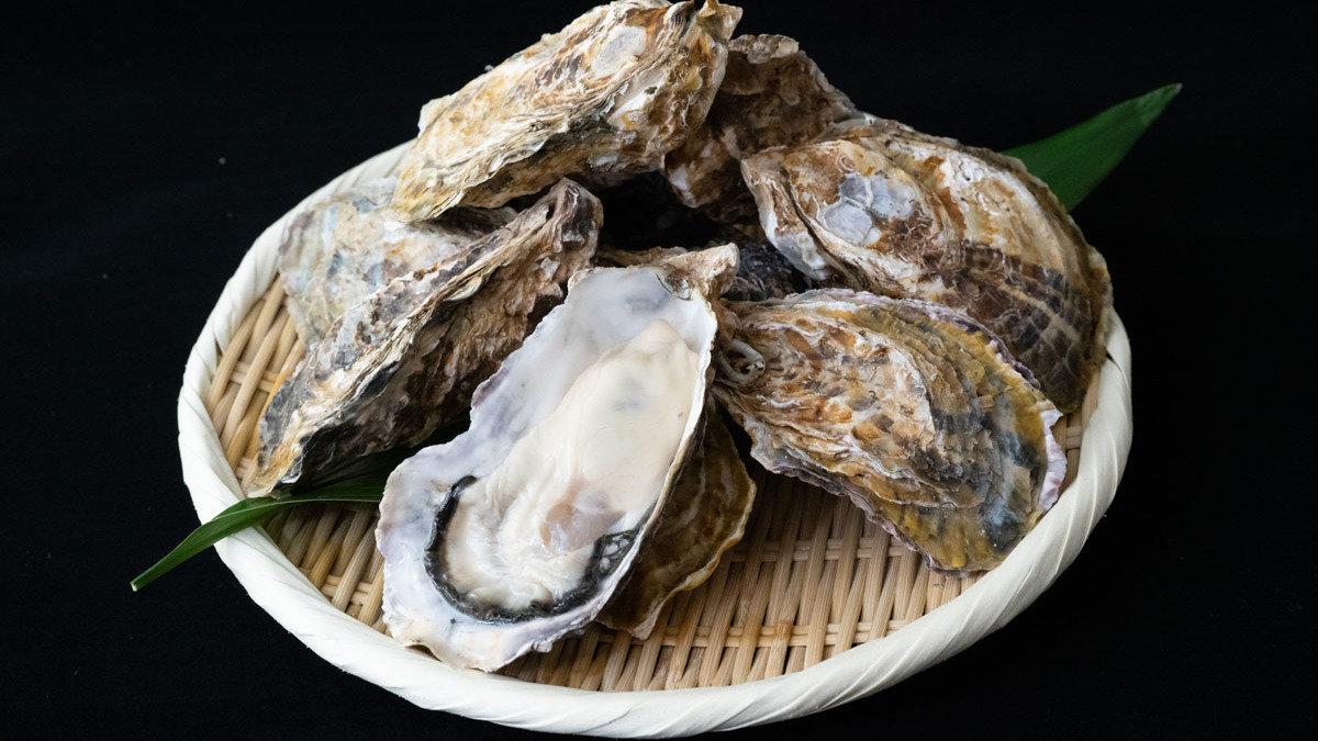 播州赤穂のブランド牡蠣!一度は食べたい「サムライオイスター」