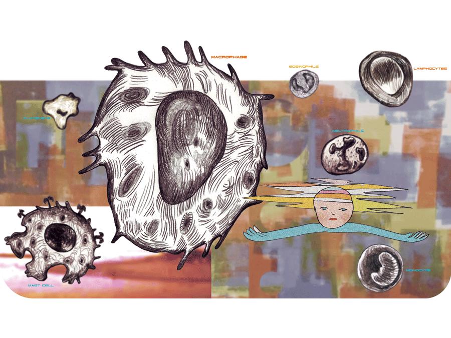 免疫系の働き