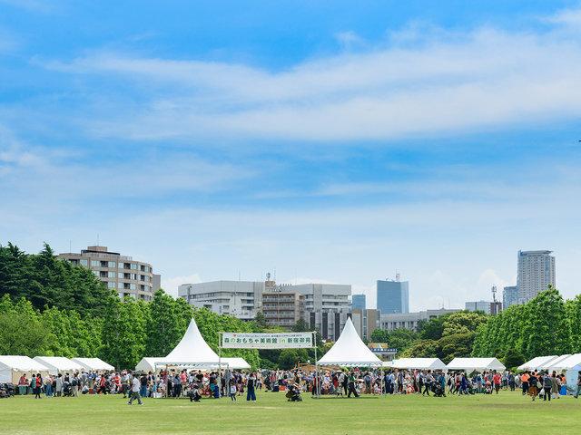第 14 回ロハスデザイン大賞2019新宿御苑展レポート。