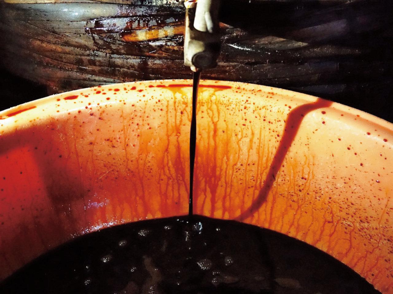 発酵✕観光の新たな可能性。