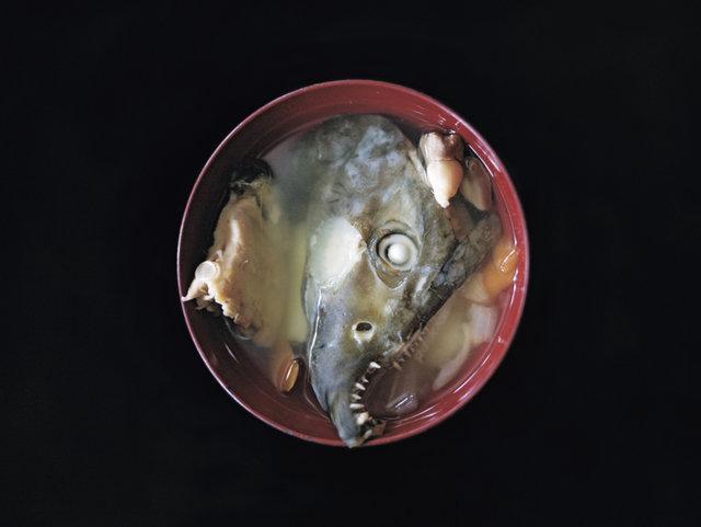 大仕事を終えた鮭の顔。はっちゃれのオハウ ーSUSTAINABLE DESIGN