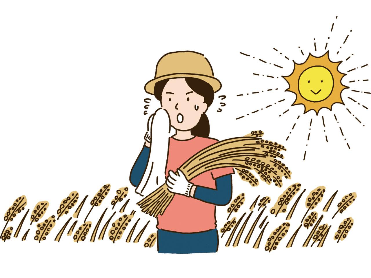 Q&Aからお役立ち情報まで。農業をもっと知りたい!