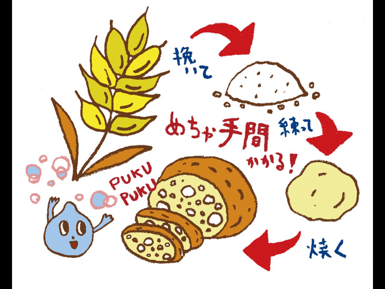 パンの歴史に見る、主食パラダイムの相違