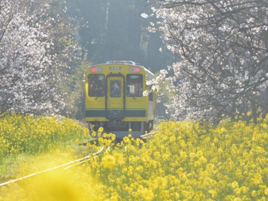 観光列車で「復興支援」日本酒きき酒師乗車の