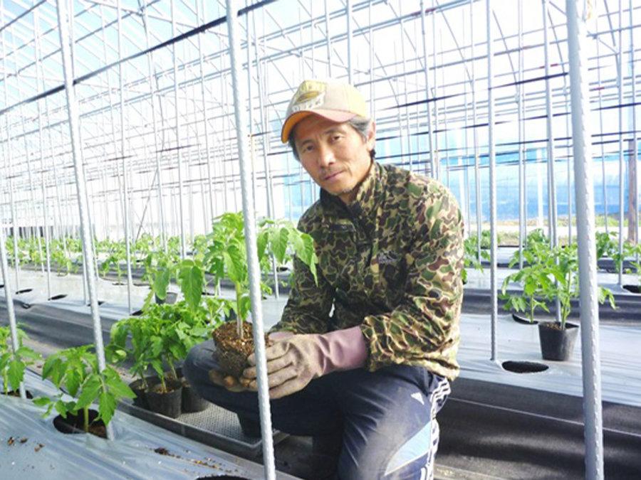 トマトに魅せられて。岡山県新見市へ移住。