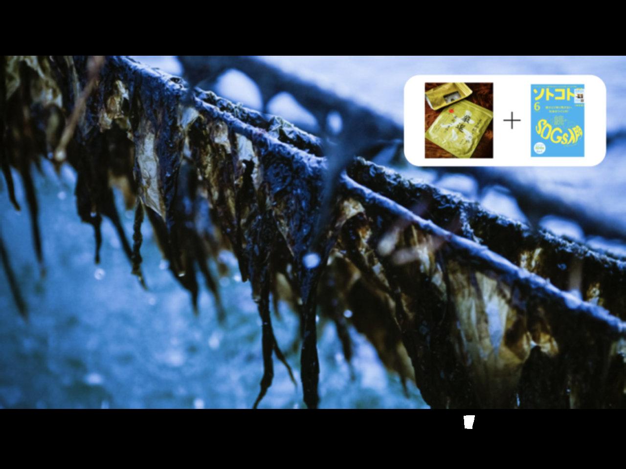 【ソトコト6月号発売記念】海苔漁師・相澤太が伝える「海苔、そして海の魅力」