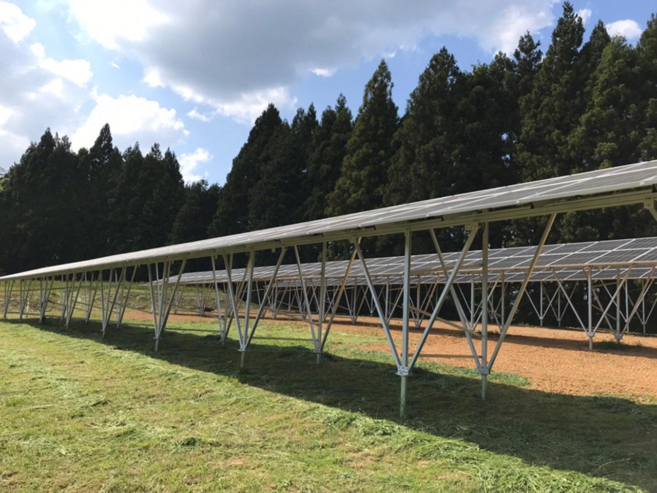 宮城県気仙沼市で新たなソーラーシェアリング事業がスタートします。
