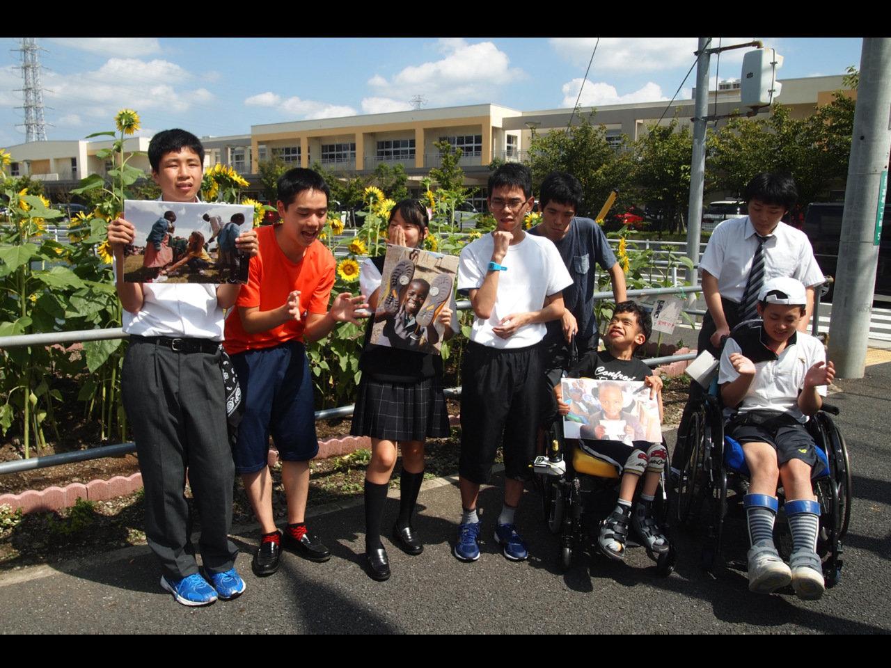 神奈川県立相模原中央支援学校では、返礼のヒマワリの種を大事に育ててくれています。