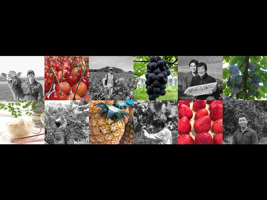 生産者応援企画。第2弾は全国のフルーツ農家を応援。北海道の旬の幸を提供する『産地直送センター』