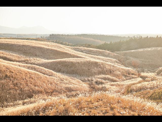 """阿蘇・南小国町の資源循環の取り組み、次の百年を作るあか牛""""つぐも""""プロジェクト始動。"""