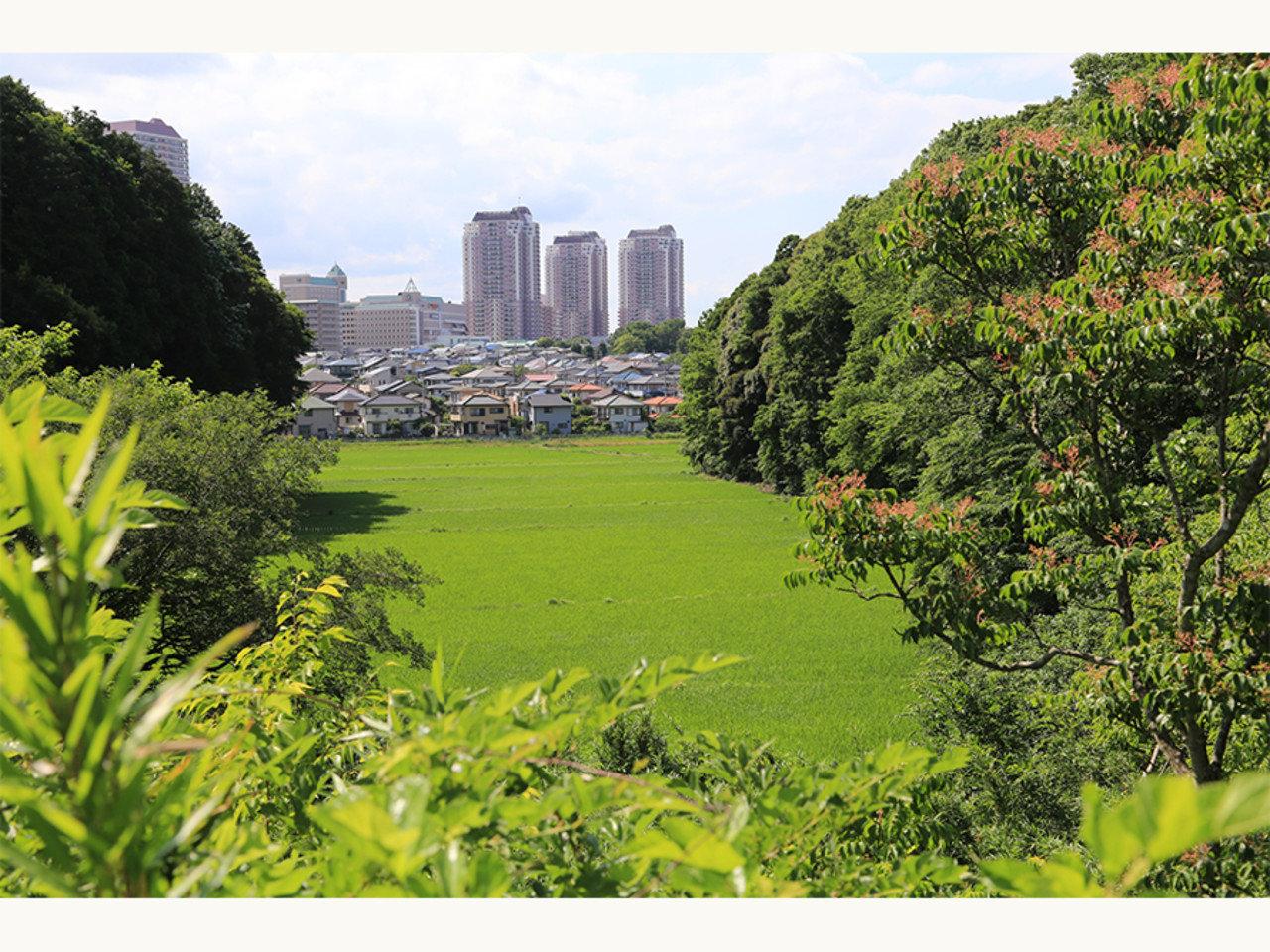 都心での仕事を変えず、自然の近くで暮らそう。千葉県佐倉市「UIJターン総合相談窓口」を開設。