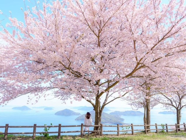 この漢字読める?「紫雲出山」香川県三豊市 浦島伝説の地でも知られる山とは