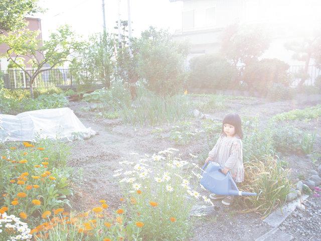 帰る場所 川内倫子×滋賀県東近江市