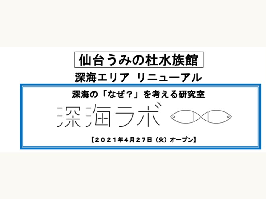 仙台うみの杜水族館 4月27日(火)に深海エリアがリニューアルオープンします!