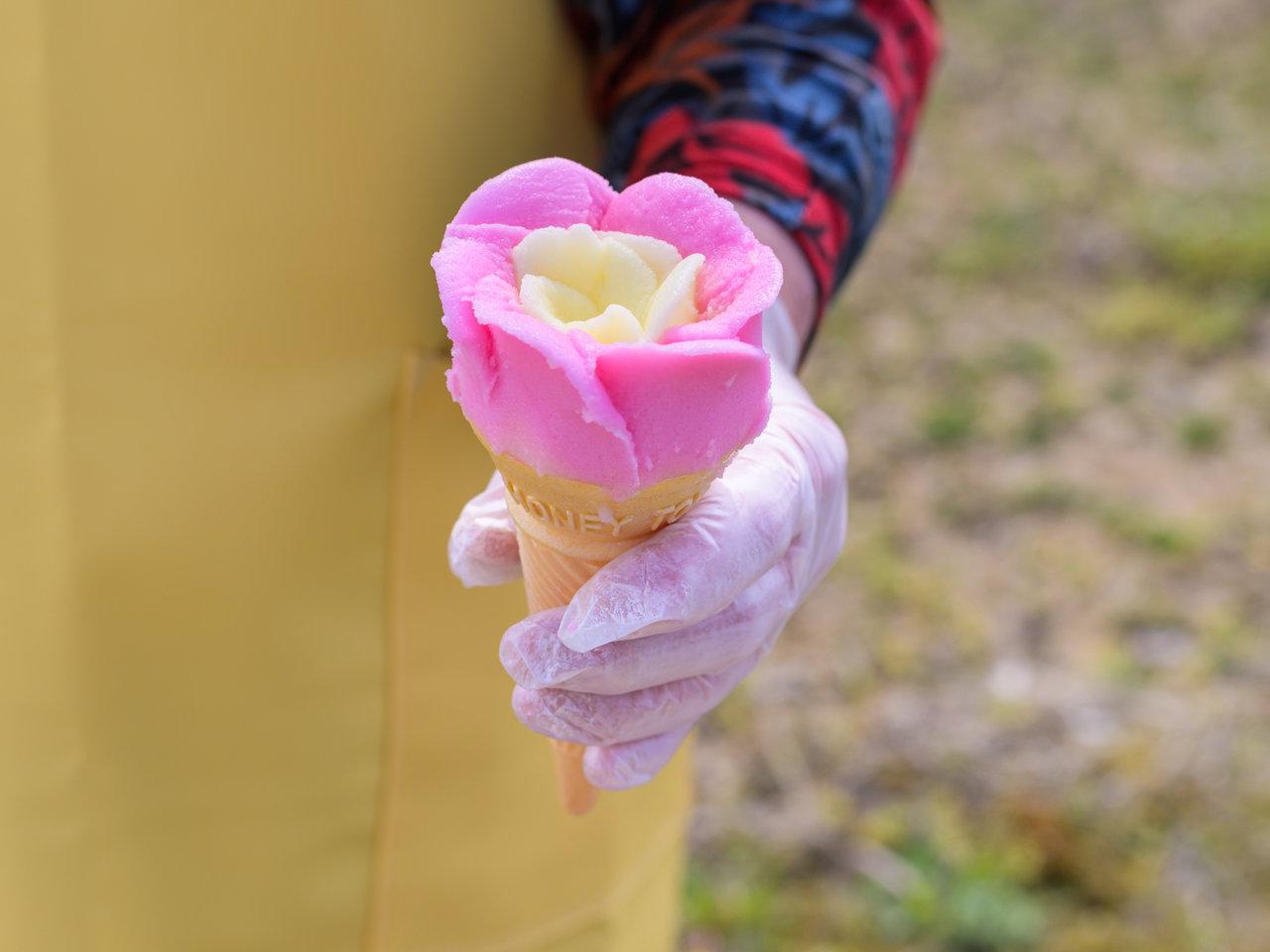 """秋田で絶大な人気を誇るご当地アイスをお取り寄せ!""""バラ盛り""""で盛り上がろう!"""