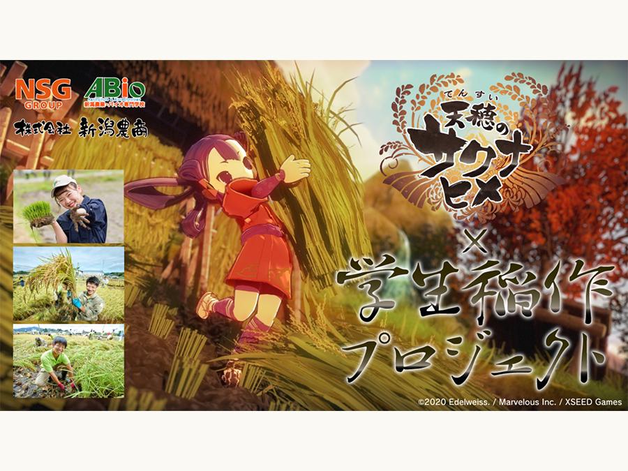 【新潟農業・バイオ専門学校】天穂のサクナヒメ×学生稲作プロジェクト2021年5月始動