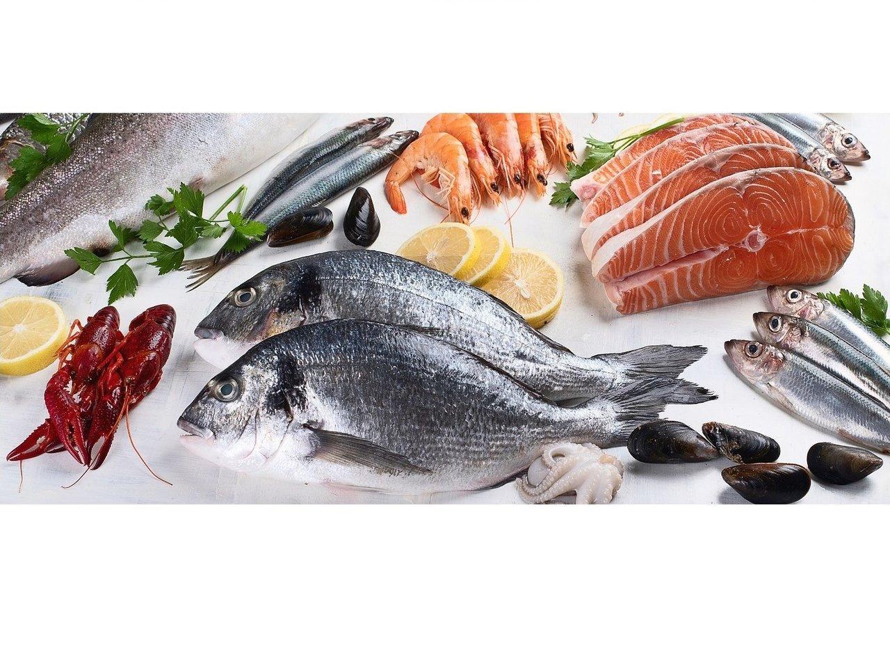 豊洲市場からバーベキュー場へ鮮魚直送サービス開始