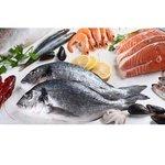豊洲市場からバーベキュー場へ鮮魚直送サービス開始 第一弾は宮崎県日南市