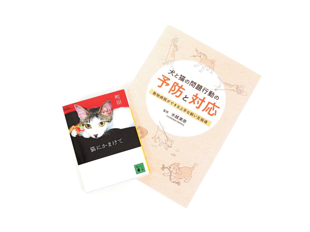 『ランコントレ・ミグノン』代表理事 友森玲子さんの選書