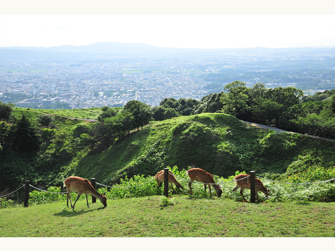 奈良市シェアオフィス設置のためのアイデア募集中