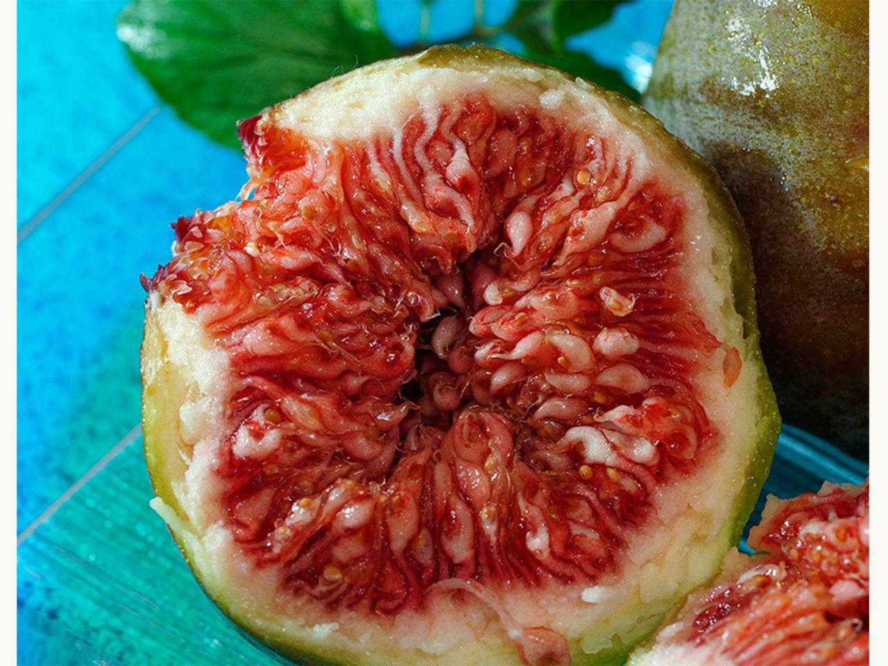 日本在来種イチジク「蓬莱柿