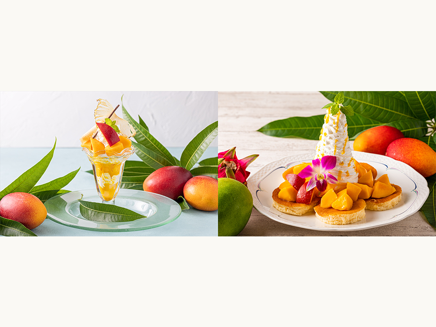 伊豆・河津産マンゴーをふんだんに使ったパンケーキ&パフェを期間限定で発売!