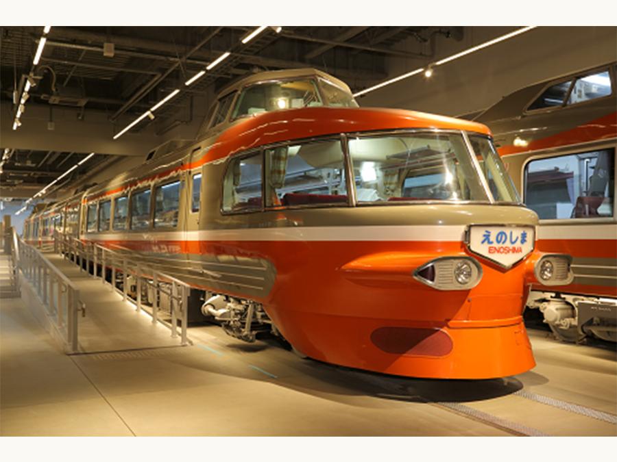 オレンジ色の人気者が新江ノ島水族館からやってくる!『オレンジ色のロマンス展』を開催