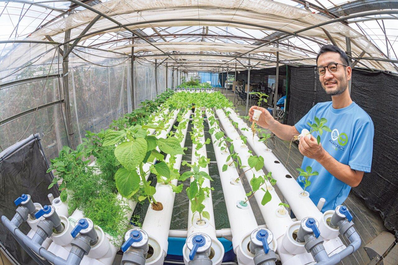 『湘南アクポニ農場』で学ぶ、循環型の新産業。