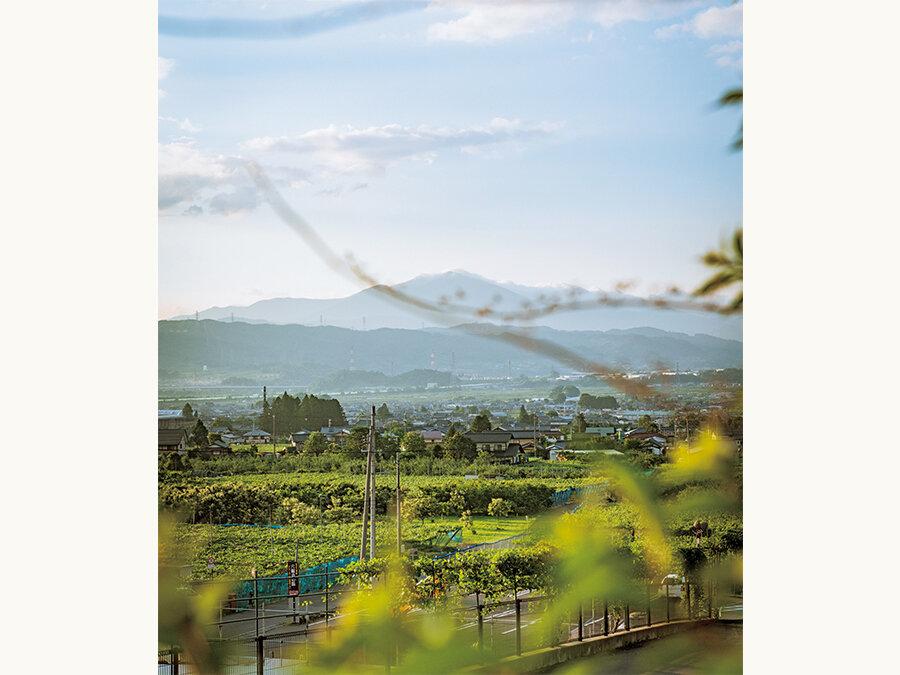 炭素も廃棄物も出ないまちを目指す、長野県・小布施町。