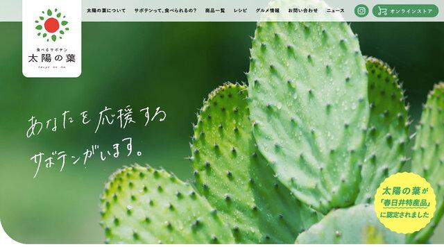 「太陽の葉」公式サイト