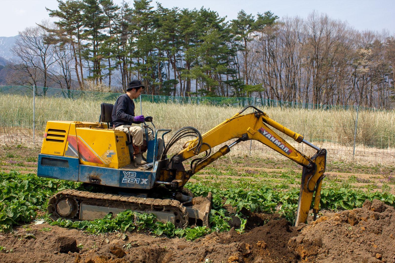 ごぼうは重機で掘って収穫するのです!
