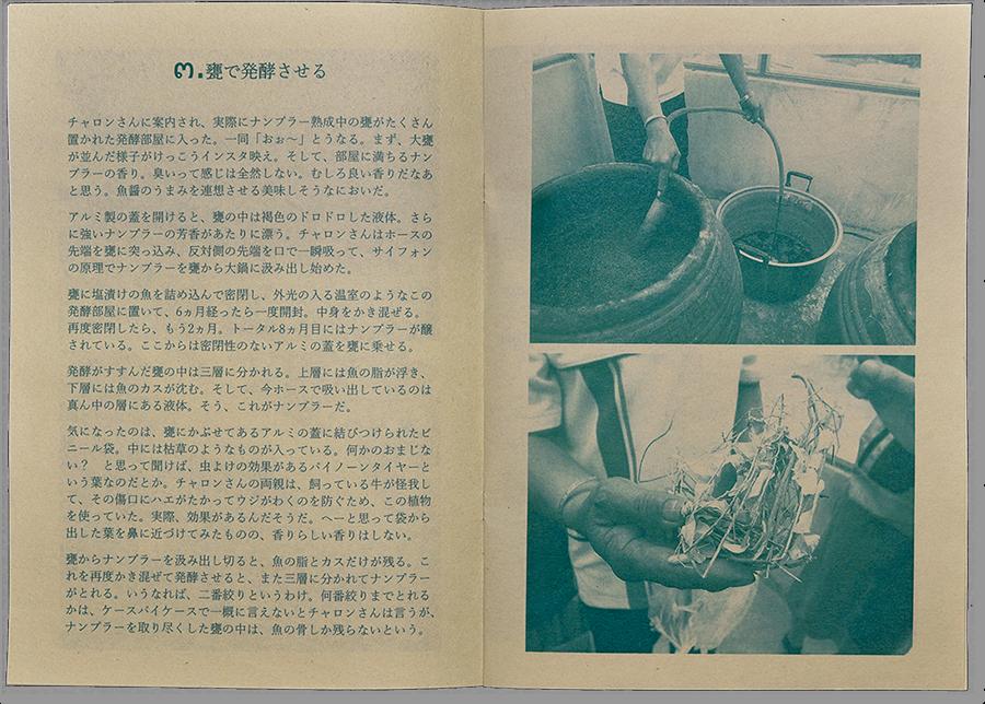 このページに驚いた! ナンプラーを熟成させる甕と不思議な草。