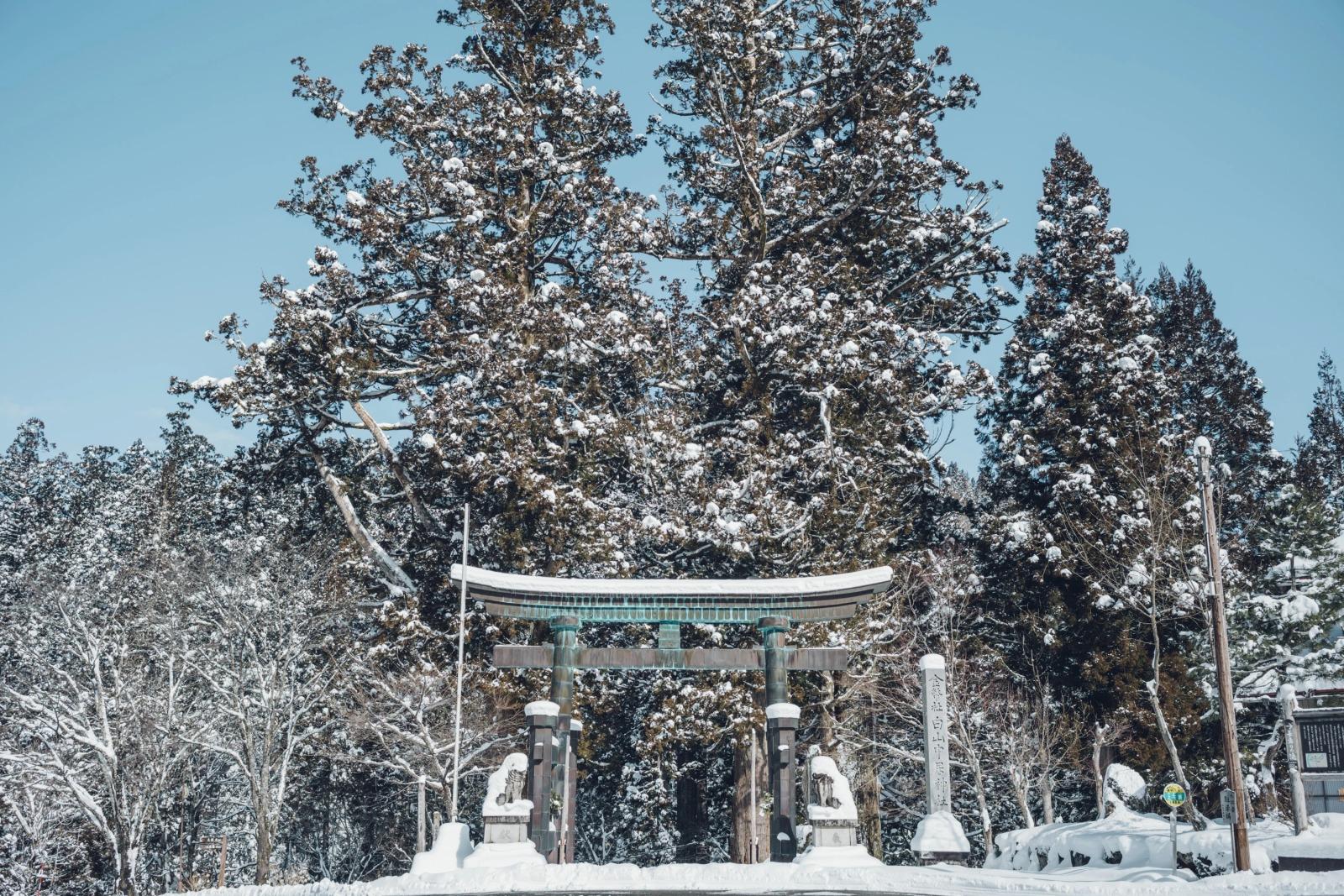 石徹白の心の拠りどころである白山中居神社。白山信仰の場として、神聖に祀られている。
