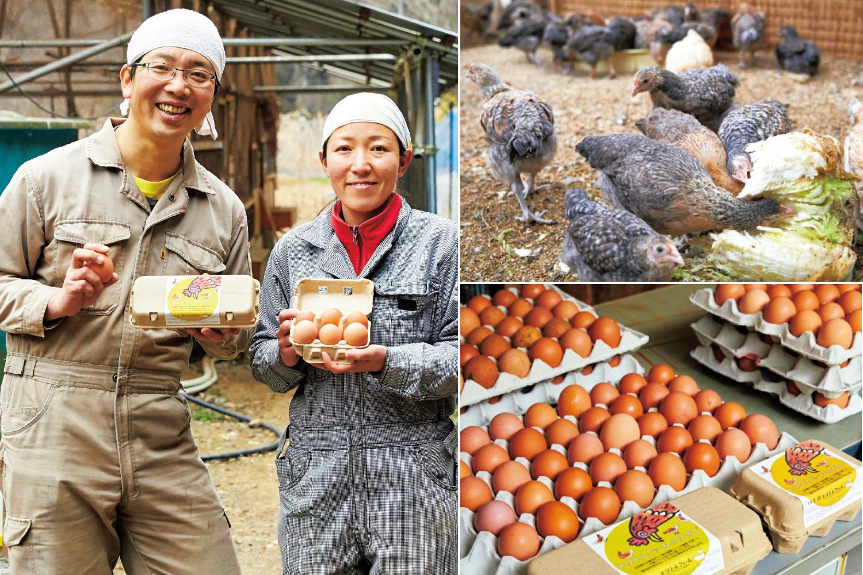 養鶏×発酵