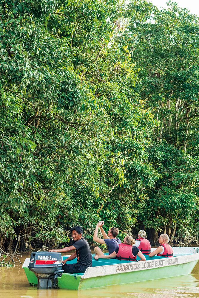 リバークルーズでオランウータンやテングザル、ボルネオゾウなどの野生動物を観察できるキナバタンガン川流域は、サバ州におけるエコ・ツーリズムの中心地。欧米をはじめ世界各地から多くの観光客が訪れる。