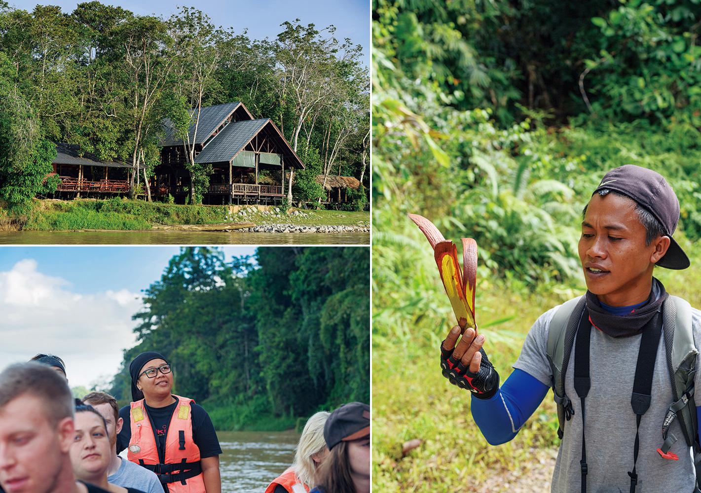 左上・キナバタンガン川沿いのロッジ。エコ・ツアーを実施。 左下・ネイチャー・ガイドのディディ(写真奥)は、植物学者を父に持ち、大学でツーリズムを学んだ若き女性。 右・巨大なフタバガキの実を持ちながら解説するインバク・キャニオン保護区のレンジャー。