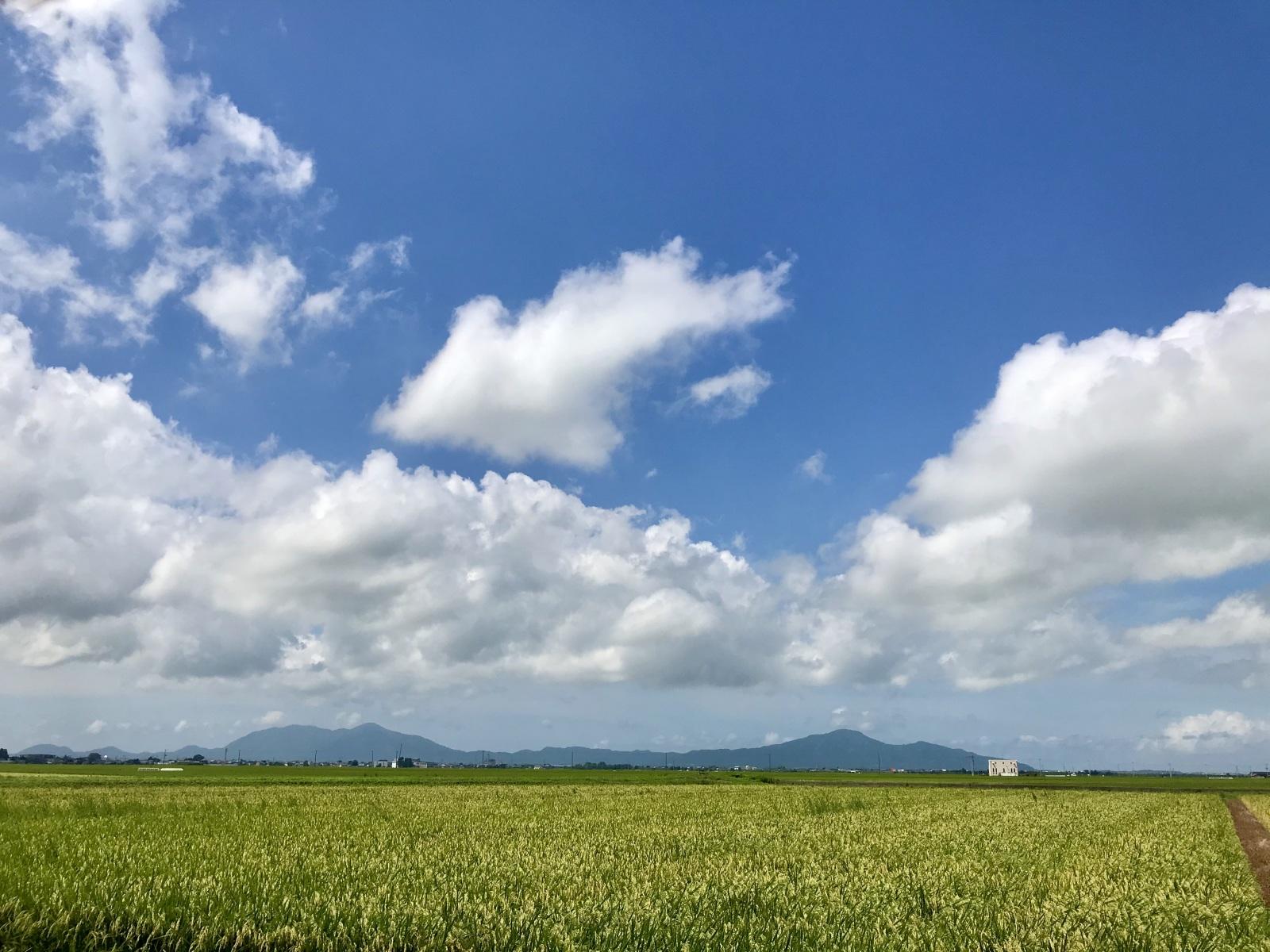 新潟の風景