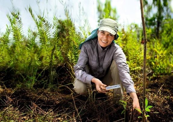 ヴェレダのバイオダイナミック有機栽培農法の様子